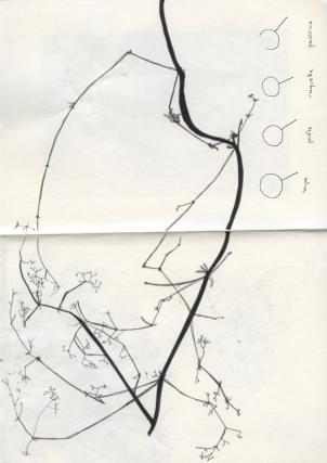 Livre d'artiste Florine impression